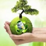 Мы стартовали экологичную акцию по сбору батареек